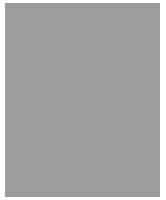 Haus-Icon grau